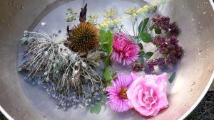 Klingender September 2020 Klangschale mit Blüten